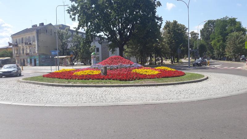 kwiaty na rondzie Hanki Bielickiej