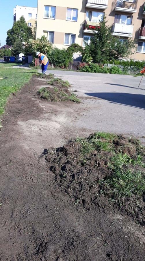 sprzątanie terenu przy bloku na ulicy Dmowskiego