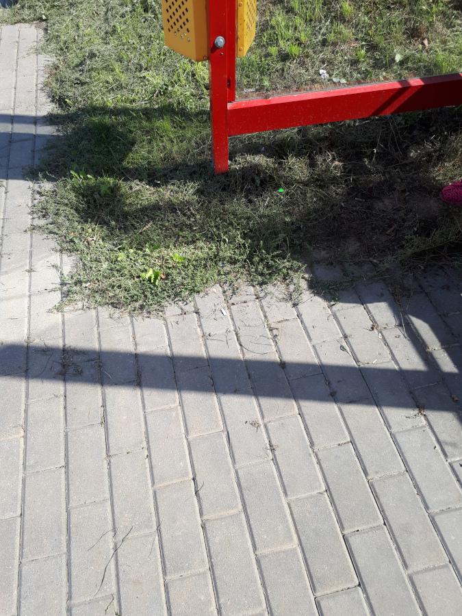 zabrudzona nawierzchnia przy przystanku autobusowym