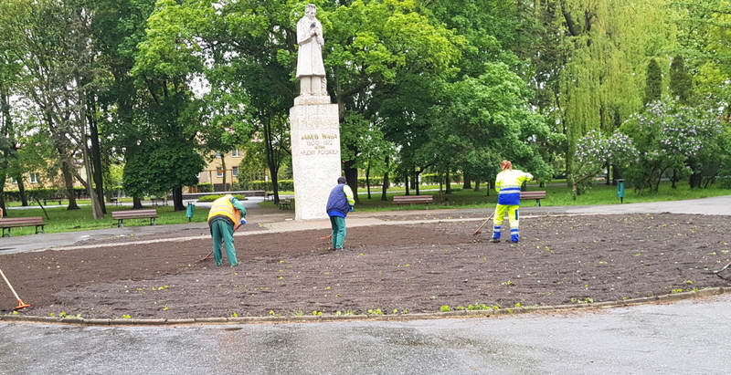 pracownicy MPGKiM porządkują teren parku