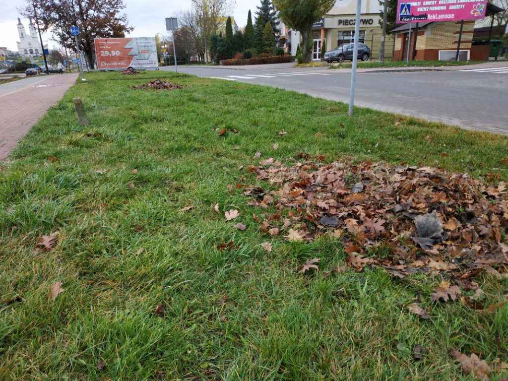 gromadki zgrabionych liści przy ulicy