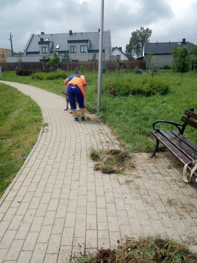 kobiety oczyszczają chodnik z trawy