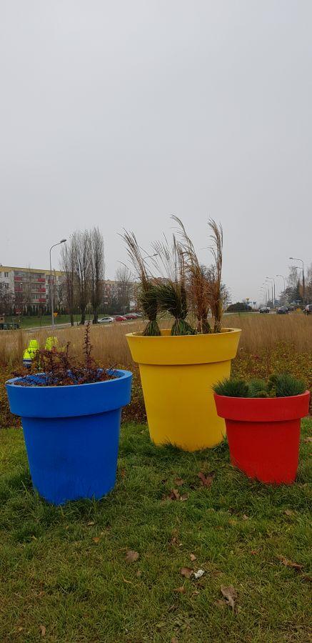 3 kolorowe doniczki z roślinami na rondzie