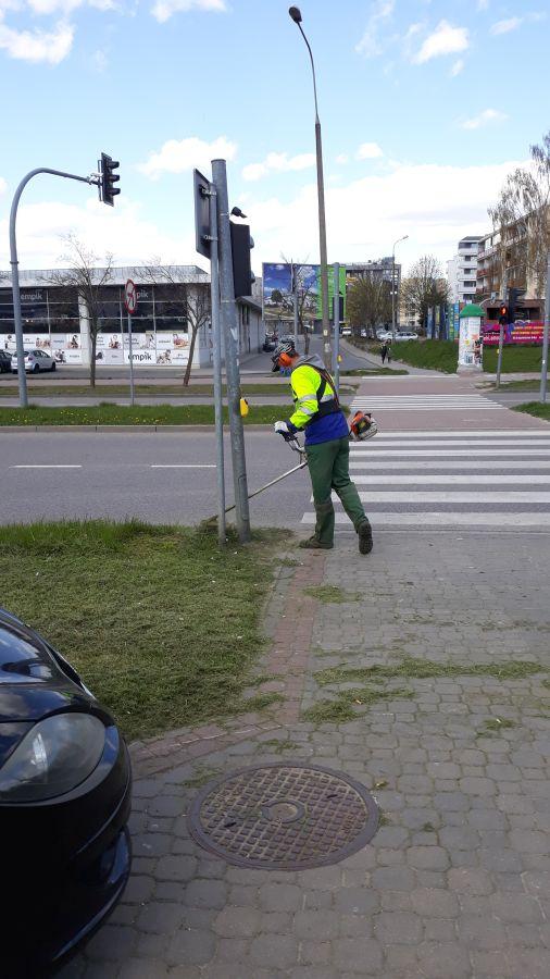 mężczyzna kosi trawę przy sygnalizacji świetlnej